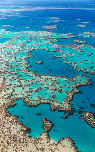The Great Barrier Reef under threat